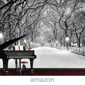 winter wallpaper new your central park